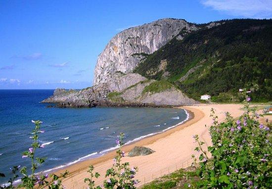 Cabo de Ogono
