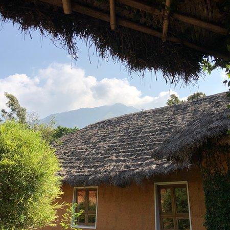 Vellamunda, Indien: photo6.jpg