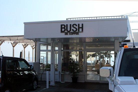 Foto de Bush