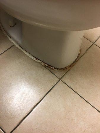 Microtel Inn & Suites by Wyndham Philadelphia Airport: The filthy bathroom.