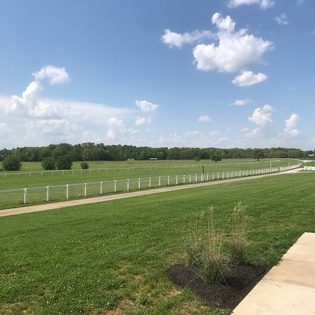 Kentucky Downs