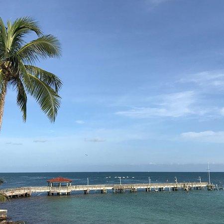 photo1.jpg - Picture of Louie's Backyard, Key West ...