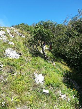 Feltre, Ý: Bel percorso non molto impegnativo