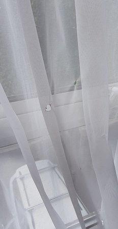 โรงแรมแบงค์ส: received_10155912498848520_large.jpg