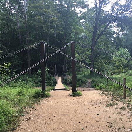 Hemlock Bridge Trail: photo0.jpg