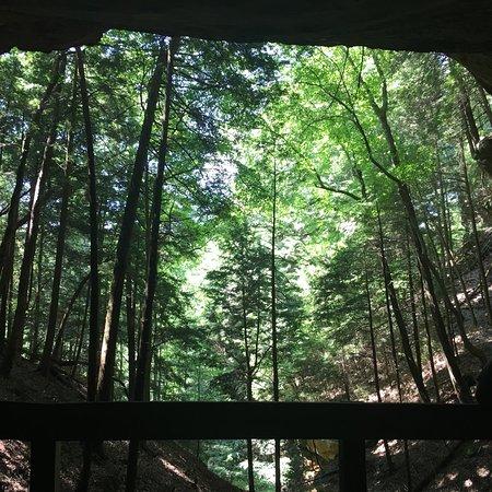 Hemlock Bridge Trail: photo1.jpg