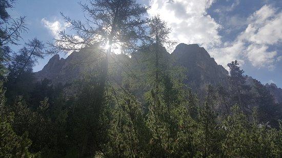 Excelsior Dolomites Life Resort: Cosa vedevo dalla camera.