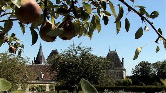 Azay-le-Ferron, Francja: verger