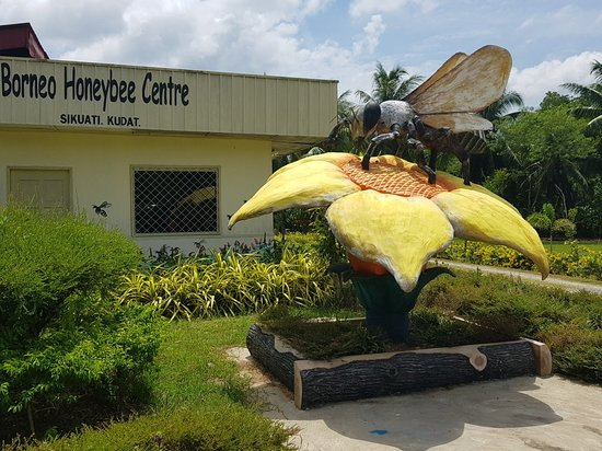 Borneo Honeybee Centre