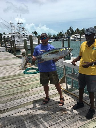 Great day catching tuna! - Picture of BITE ME Sport Fishing