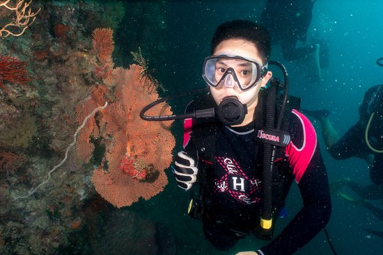 Ko Phi Phi Lee, Thái Lan: มาดำน้ำ