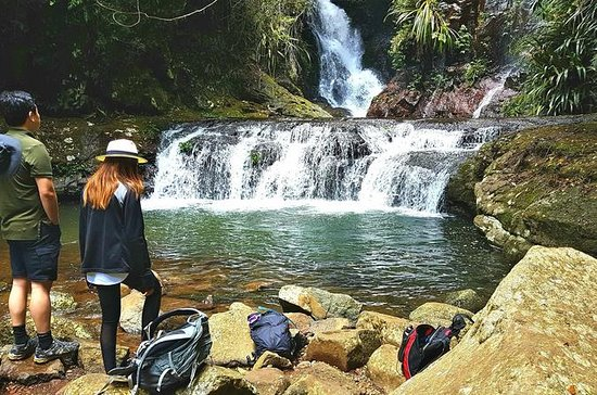 Lamington National Park Hiking Tour from the Gold Coast: Picnic Rock...