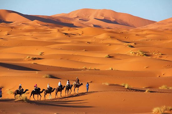 3 days,2 nights Desert Tour from Fes