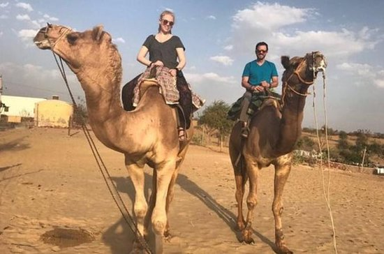 Tour privato: Camel Safari e Bishnoi