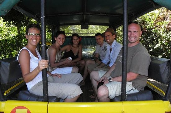 Tour privado: Moorea 4x4 Safari