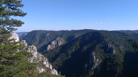 National Park Tara: Видиковац Соколарица