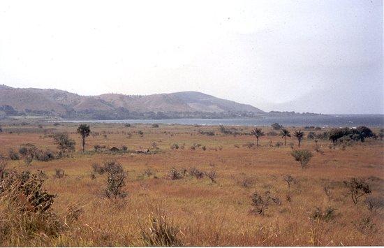 Vue sur la presqu'ile d'Ubwari au nord de Yungu (1991)