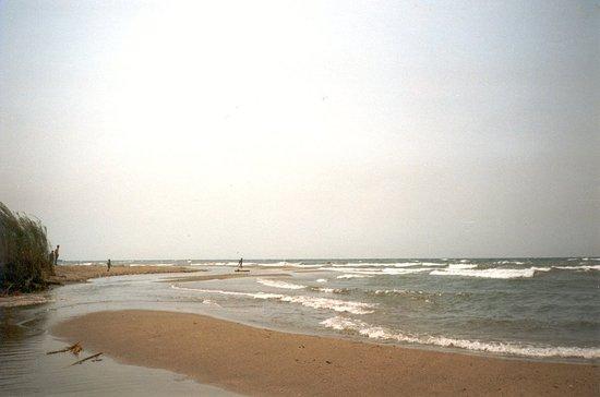 Lac Tanganyika à Yungu et Kazimia (1991)