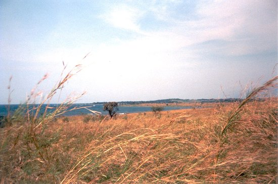 Lac Tanganyika à Yungu et Kazimia (191)