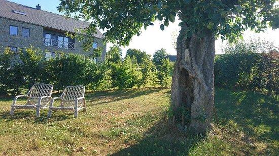 Stoumont, Бельгия: DSC_9334_large.jpg