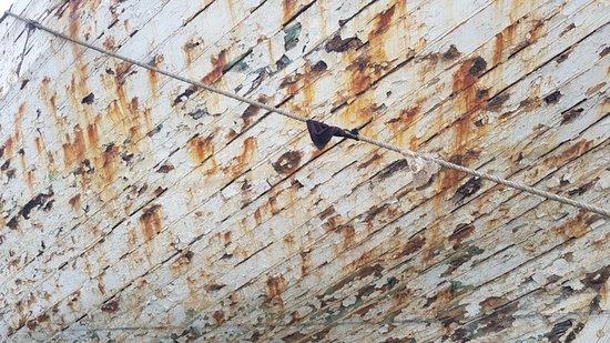 Close-up of ship's hull - Picture of Sunda Kelapa Harbour