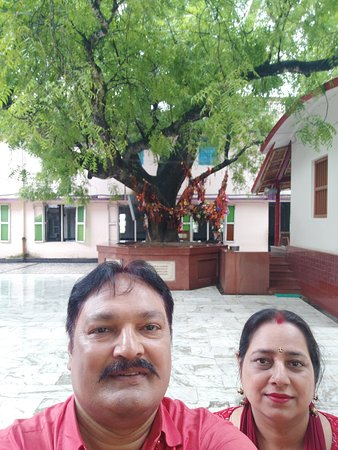 Sri Chaitanya Math: The neem tree in the background and the cottage, birth place of Mhaprabhu.