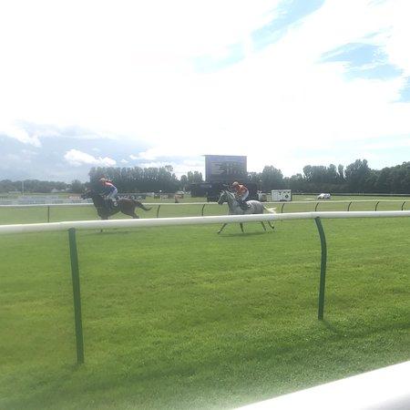 Home | Ayr Racecourse |Ayr Race Track