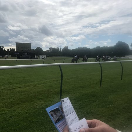 Ante-Post Betting: Ayr Gold Cup : Tipping : Horse Racing |Ayr Race Track