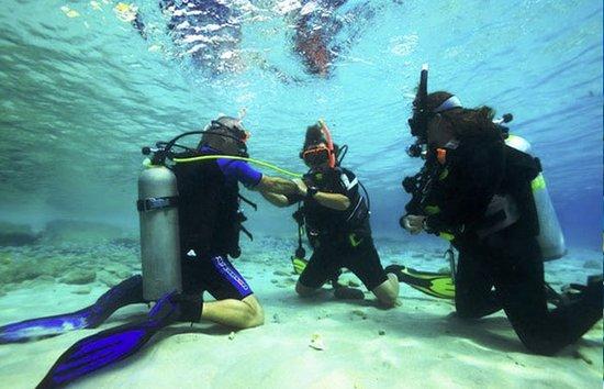 Dive Greenfins