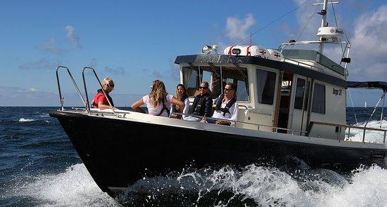 Är ni ett gäng som vill ut på havet  så går det bra att chartra Elin af Marstrand.