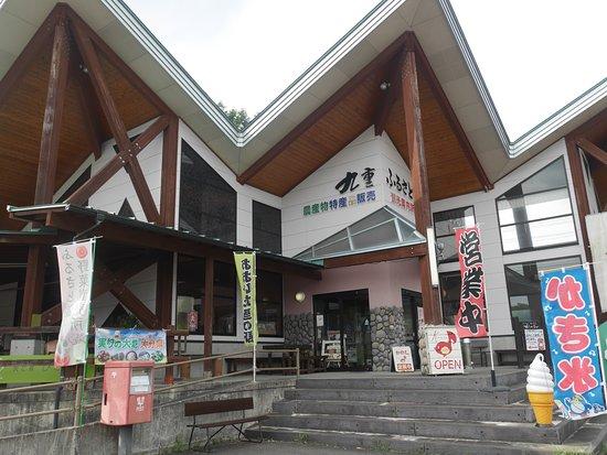 Kokonoe Folk Museum