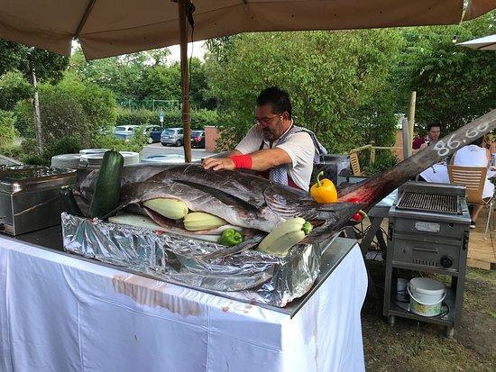 Gerolzhofen, Deutschland: Ein riesiger Schwertfisch landete bei Giovanni auf dem Grill