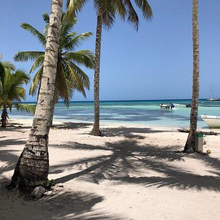 Excursion a la Isla Saona : photo4.jpg