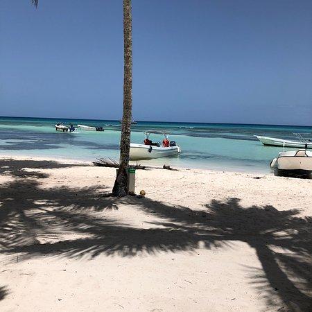 Excursion a la Isla Saona : photo5.jpg