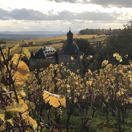 Weingut Hamm