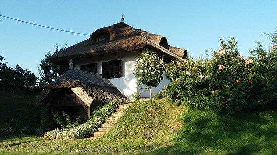 Lendava, Eslovenia: 20180719_185257_large.jpg