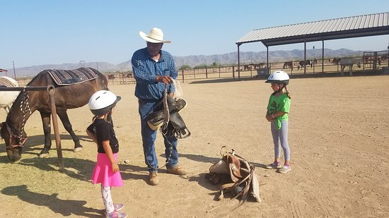 Photo2 Jpg Picture Of Koli Equestrian Center Chandler