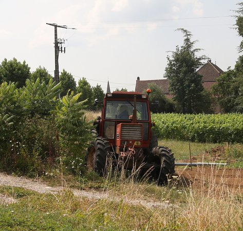 Vue du village de Corpeau