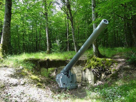 Verdun, Frankrike: Un vrai canon grandeur-nature dans sa casemate (sans le toit)
