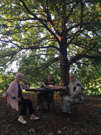 Fronsac, France: Lunch under the arbour