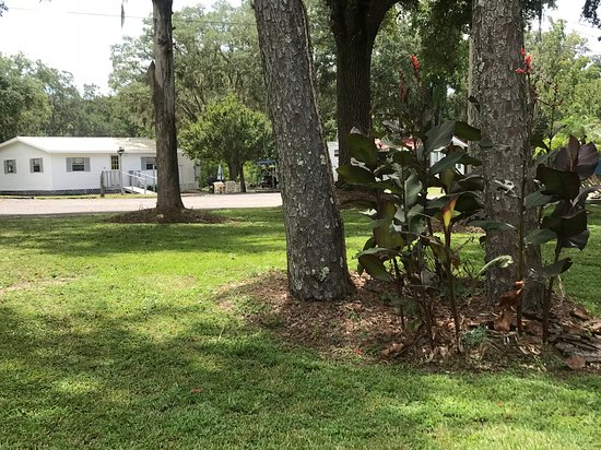 Old Town, FL: Featuring a clubhouse with a full kitchen, TV, movies, puzzles, and games!