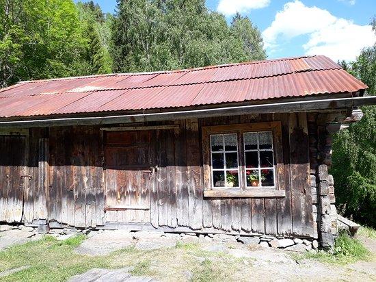 Tokke Municipality, النرويج: Rui Plass. Huset og plassen hvor Hei Jentene bodde.