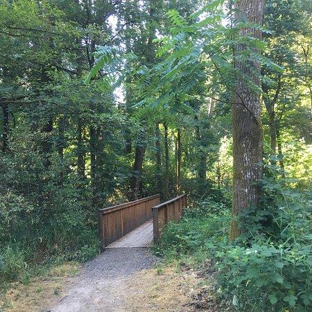 Chehalem Heritage Trails: photo1.jpg