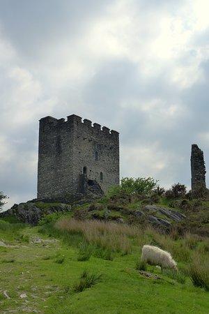 Dolwyddelan Castle: Castle