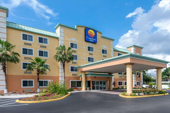 Comfort Inn 96 ̶1̶9̶0̶ Updated 2019 Prices Amp Hotel