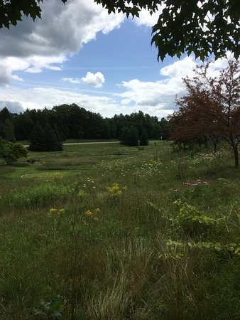 Guilford, VT: Meadow views from the playground.