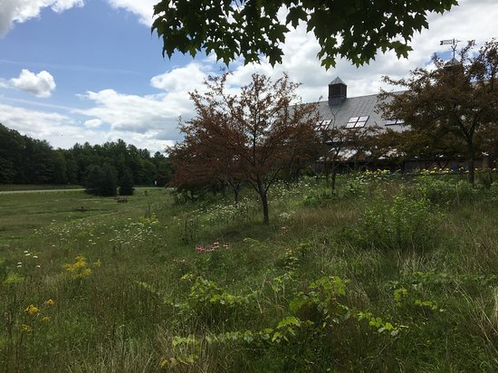 Guilford Welcome Center: Meadow views from the playground and picnic area.