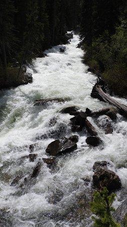 Cascade Canyon: Cascade Creek