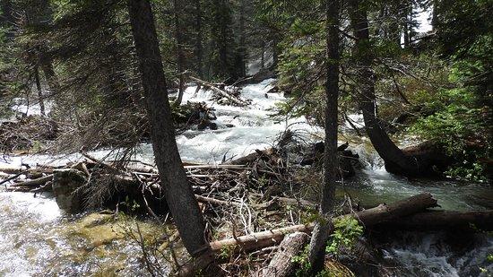 Cascade Canyon: Bottom of the Hidden Falls