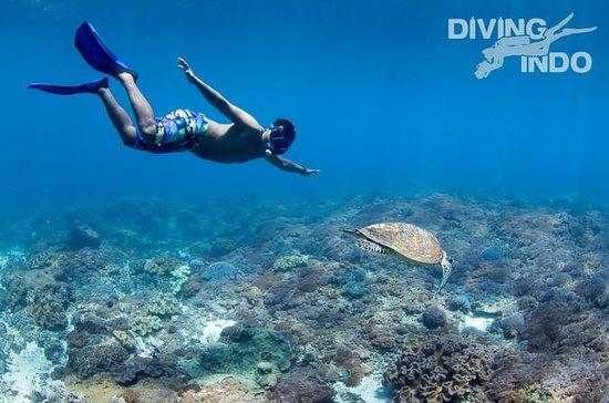 Snorkel en la Laguna Azul